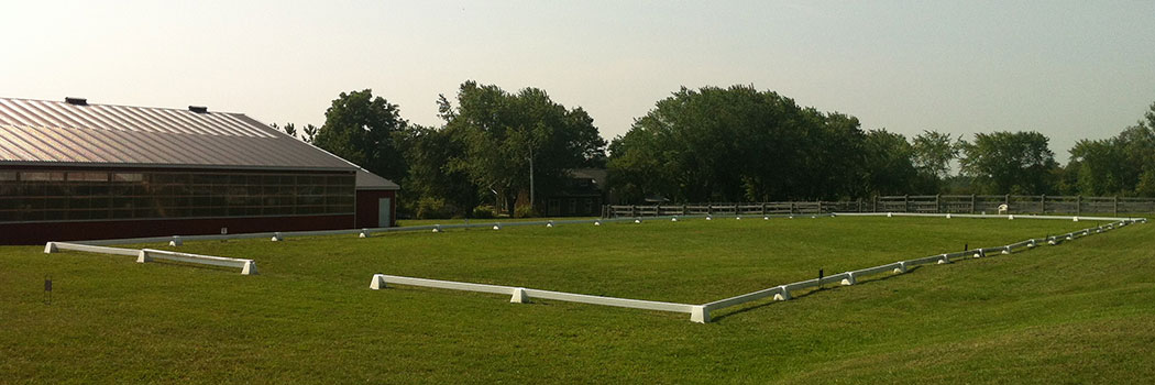 dressage grass arena
