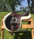 Hunter Shaped with Saddle