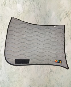 dressage grey